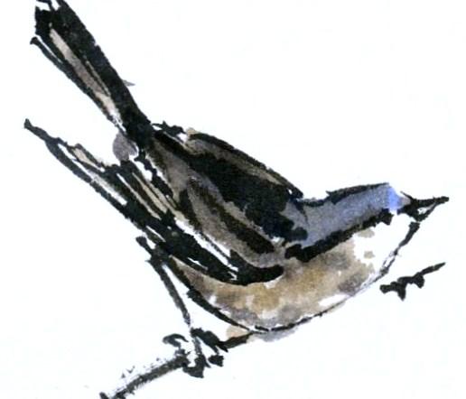 3-pajaro-de-miguel-elias