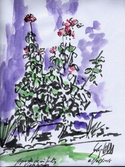 4-flores-de-miguel-elias