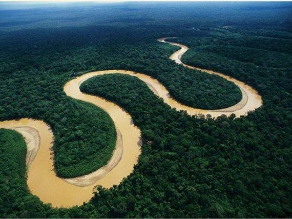 9 Selva peruana