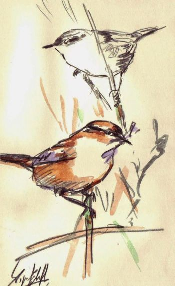 3 Pájaros, de Miguel Elías