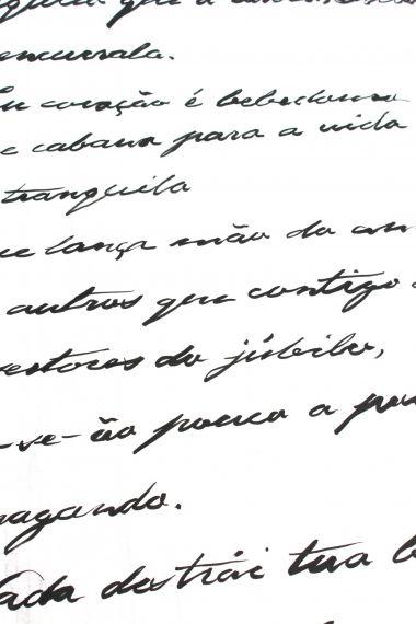 9 Detalle de la caligrafía